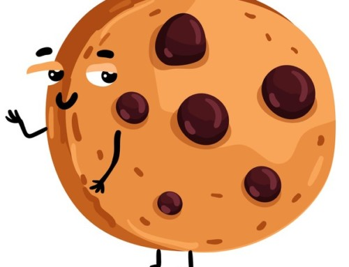 Cookies, les bons réflexes rappelés par le Conseil d'Etat