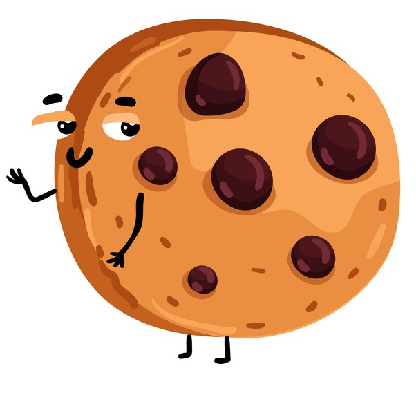 cookies-opposition-conseil-etat-mathias-avocats