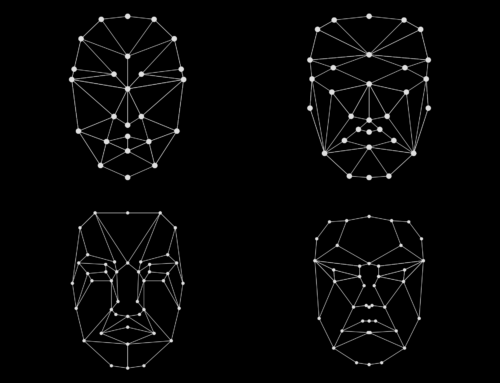 Facial recognition regulation in the USA: an efficient legal patchwork?
